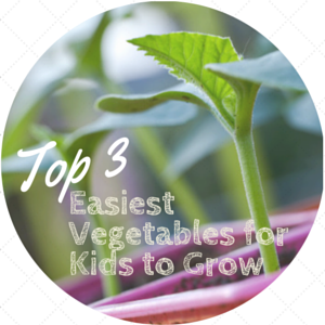 EASIEST VEGETABLES FOR YOUR KIDS TO GROW (THAT EVEN PICKY EATERS WILL EAT)